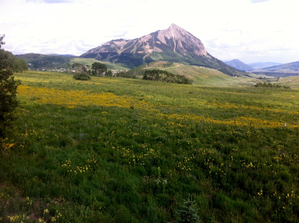 View from Meridian Lake of Mt. Crested Butte