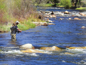 Private Fly Fishing Crested Butte
