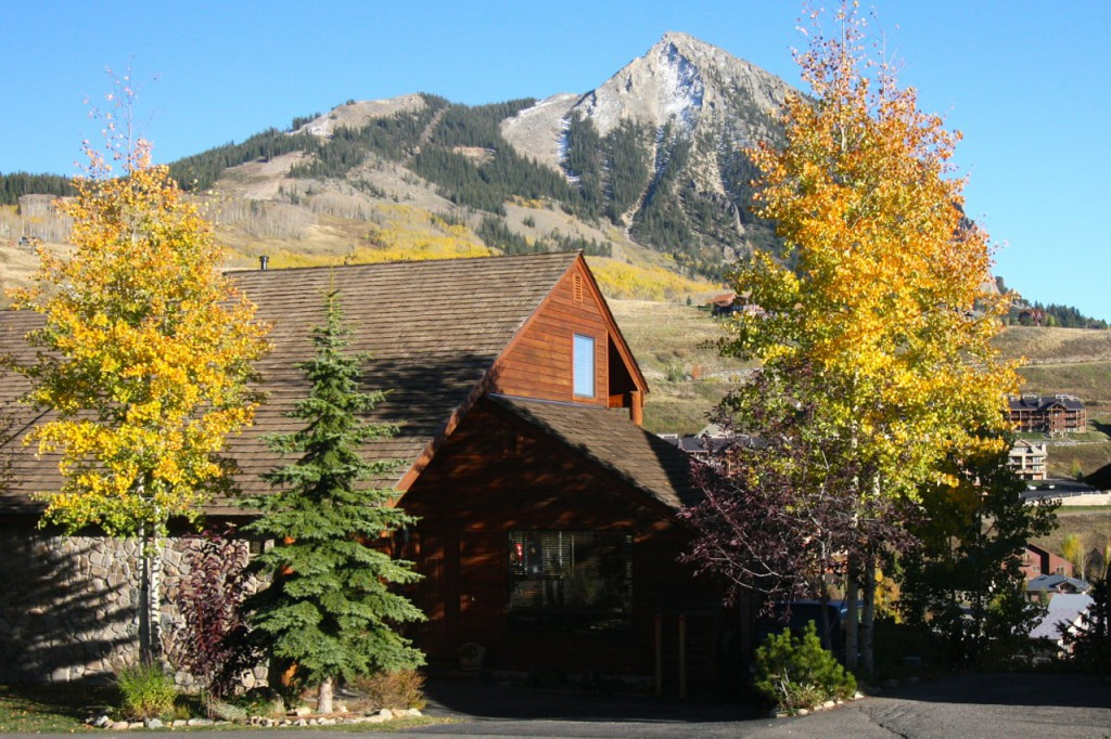 Crested Butte Real Estate Town home For Sale