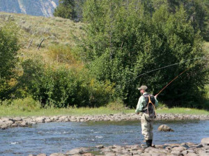 Three Rivers Willowfly Anglers