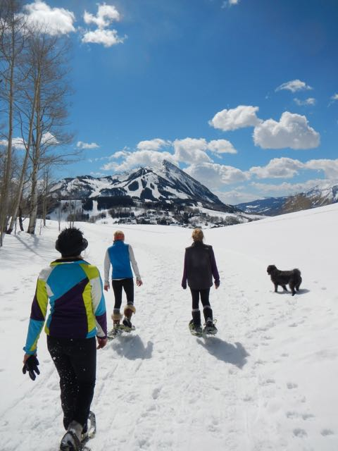 Buying Your Crested Butte Dream Home - Are You Ready?