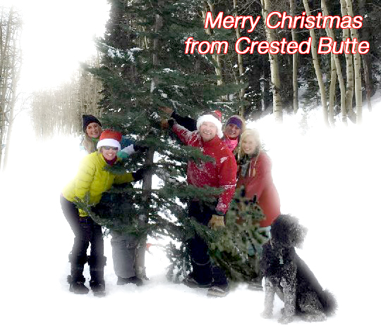 Your Crested Butte Christmas Tree
