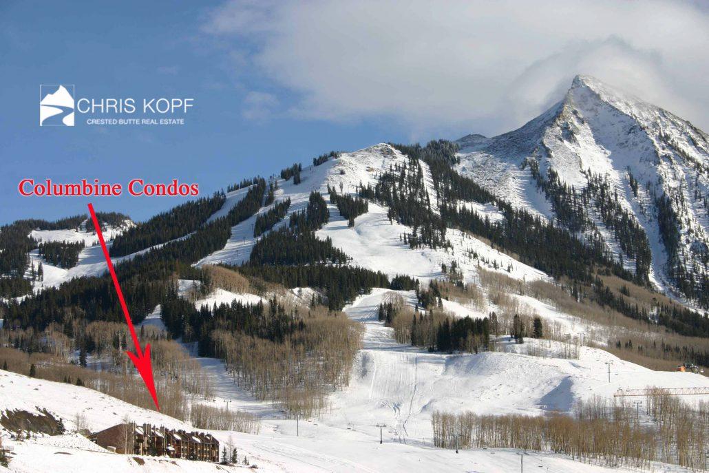 Mt Crested Butte Columbine Condo Sold