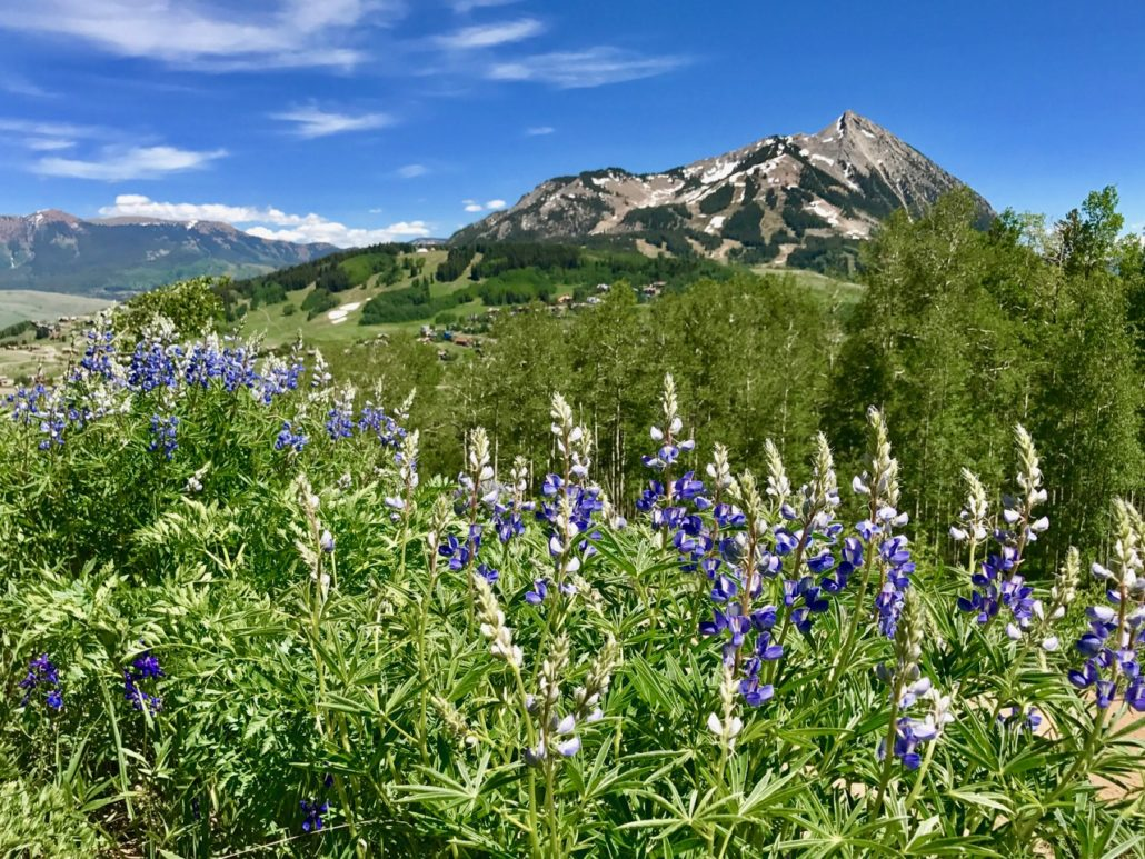 To Build or Buy Your Crested Butte Home