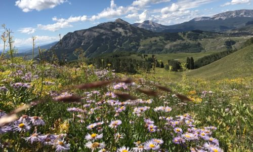 Important Amenities When Buying Crested Butte Home
