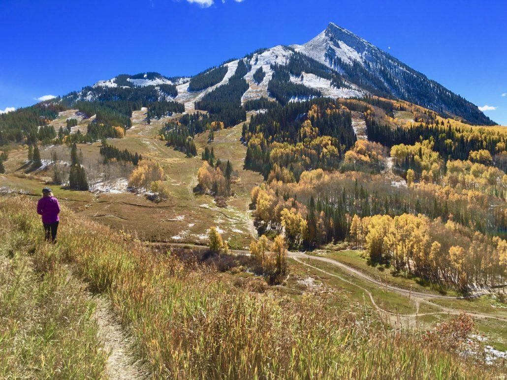 For Sale By Owner When Buying Crested Butte Home
