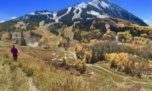 Best Real Estate Developers in crested butte