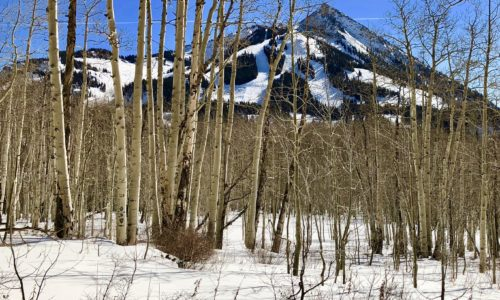 Checklist for Closing When Buying Your Crested Butte Home