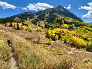 Which Type Of Crested Butte Home Is Best For You?