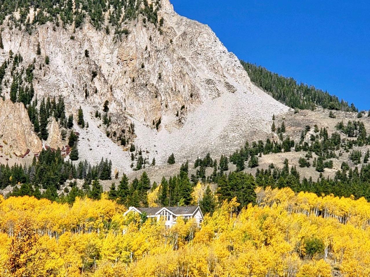 Crested Butte Autumn Colors