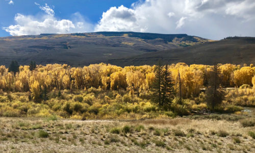 Different Disclosures When Selling Your Crested Butte Home