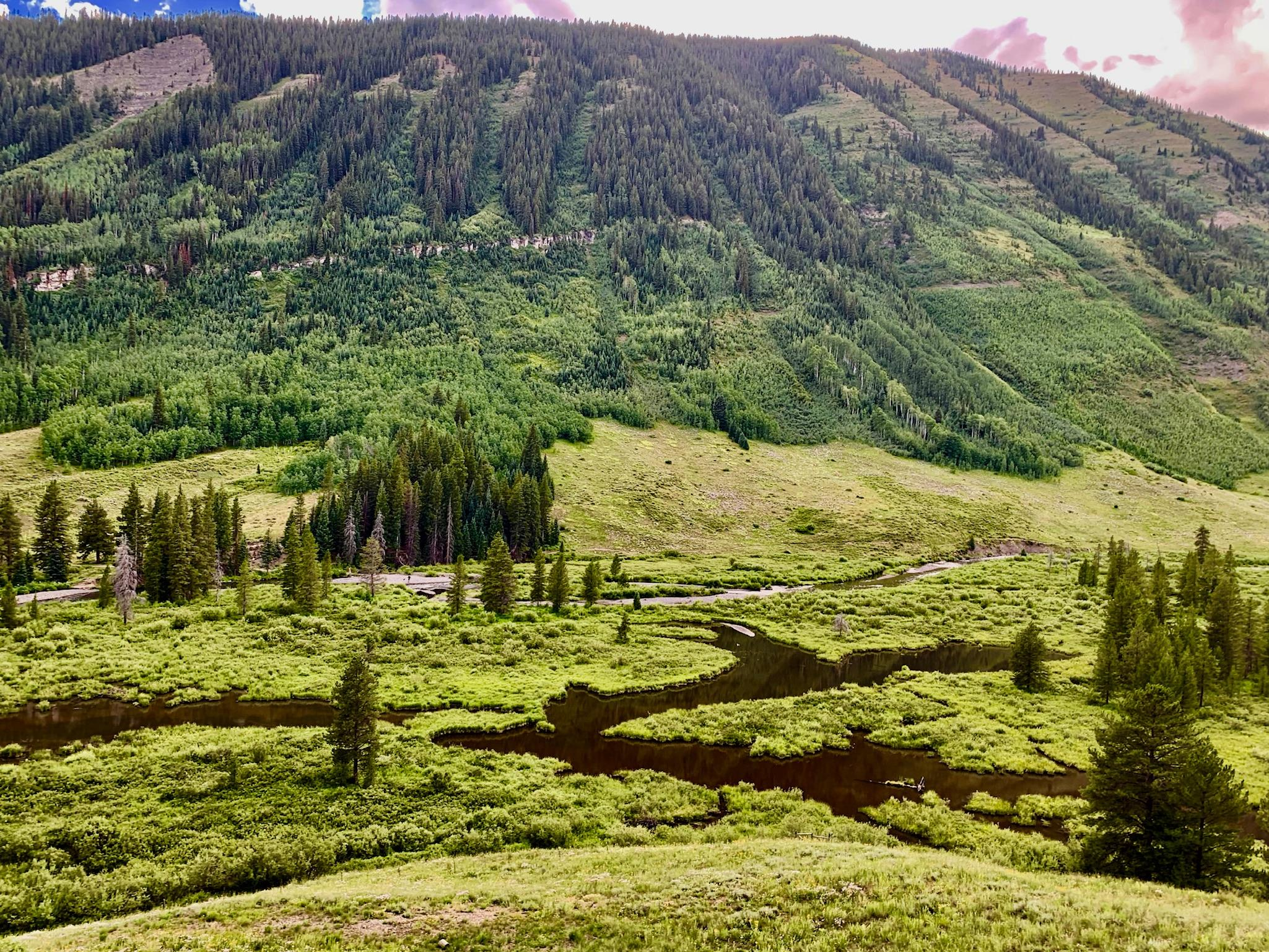 Is Buying a Condo in Crested Butte Right For You?