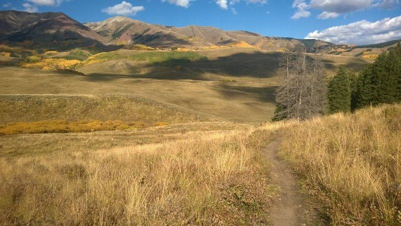 August Community Insider Crested Butte