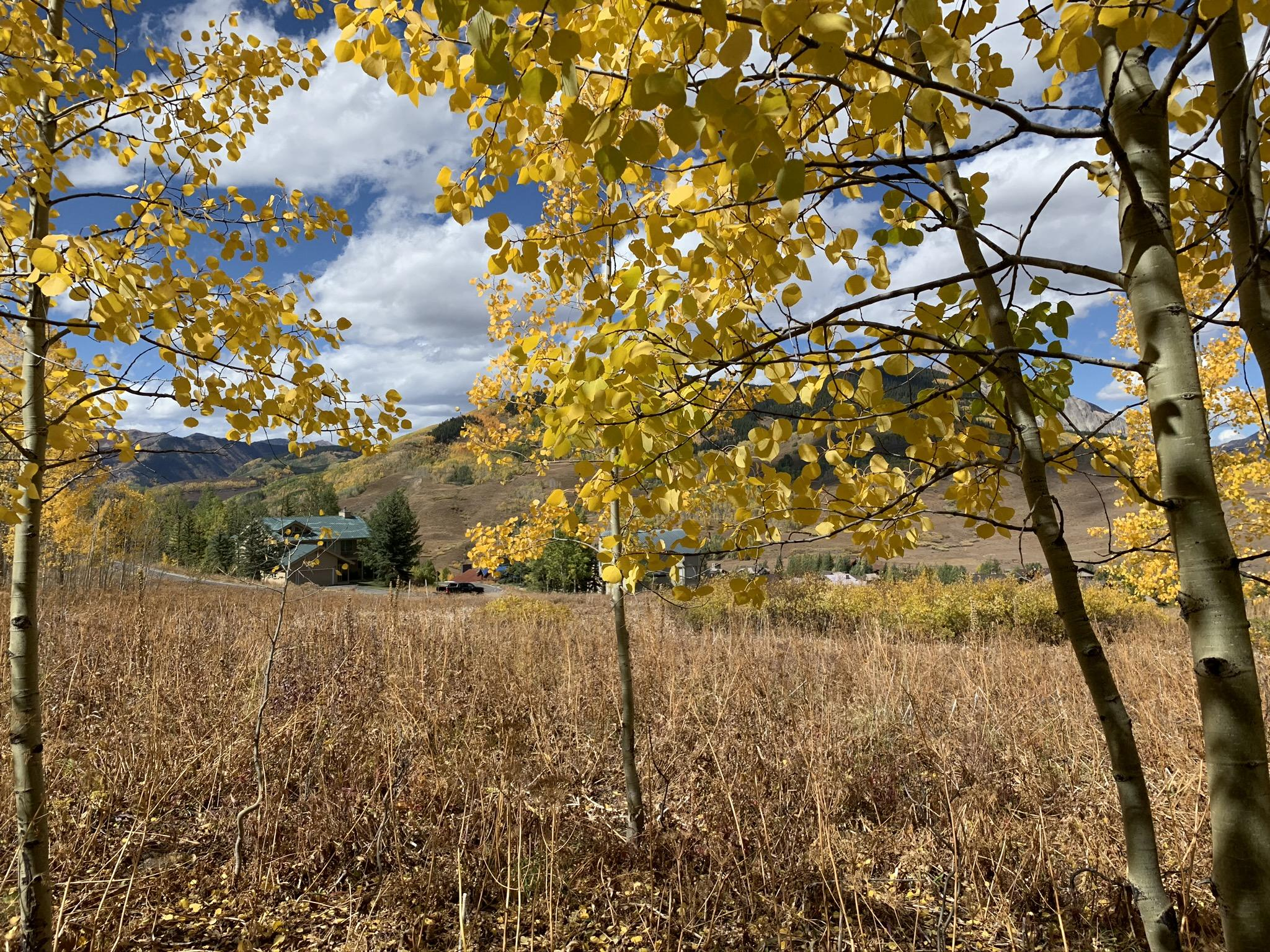 How Real Estate Commission Works In Crested Butte