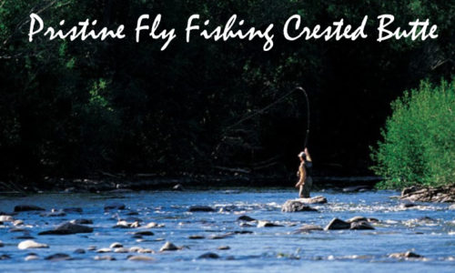 Pristine Fly Fishing Crested Butte