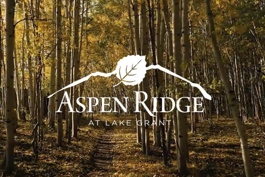 New Listing Aspen Ridge at Lake Grant
