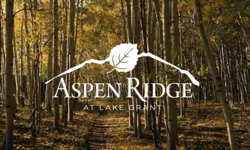 New Listing Aspen Ridge at Lake Grant