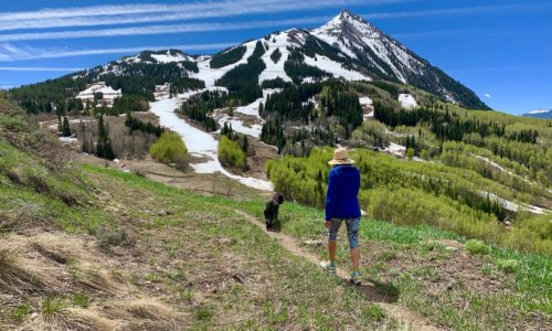 Crested Butte May Community Insider
